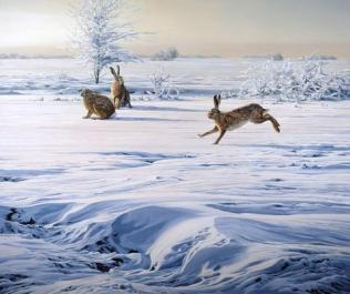 courting_hare-snow-print_large
