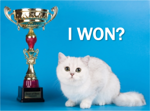 current-event-cat-nobel-winner