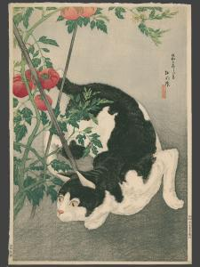 shotei_takahashi-no_series-black_cat_and_tomato_plant-00043835-120415-f12